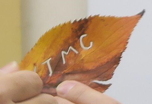 s-autumn_leaves